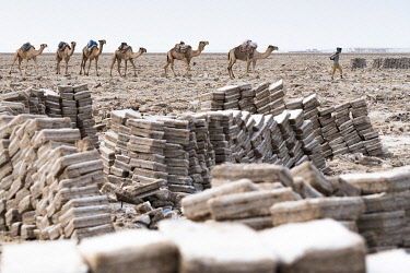 CLKRM130932 Salt blocks extracted from salt flats, Dallol, Danakil Depression, Afar Region, Ethiopia, Africa