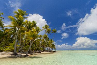 CLKSP132153 Blue Lagoon, Rangiroa, Tuamotu Archipelago, French Polynesia.
