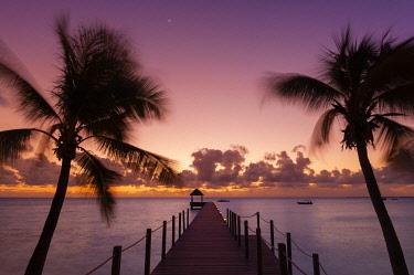 CLKSP132165 Fakarawa, Tuamotu Archipelago, French Polynesia.