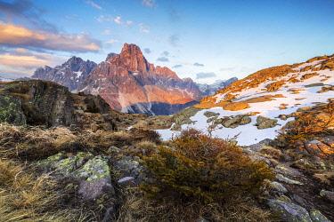 CLKMB132415 A view of Cimon della Pala from Cavallazza,  Passo Rolle, Trento, Trentino Alto Adige, Italy, Southern Europe
