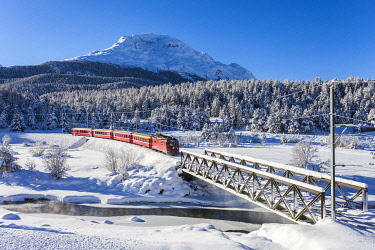 CLKRG127412 Bernina Express train in the snowy landscape, Pontresina, Engadine, canton of Graubunden, Switzerland