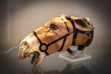 FRA11867AW France, Corse, Aleria. A horse head cup in the Ghjilormu Carcopino Museum.