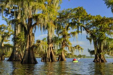 USA15601AW USA, Louisiana, Jefferson Parish,St.Martinville, Lake Fausse