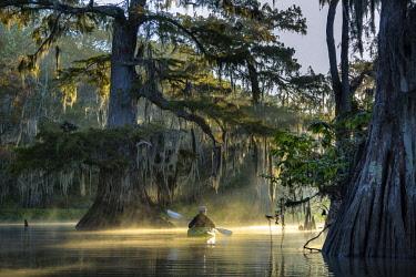 USA15607AW USA, Louisiana, Jefferson Parish,St.Martinville, Lake Fausse, woman in kayak in cypress swamp MR 0009