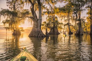 USA15609AW North America; USA; American; South; Seep South; Louisiana; Jefferson Parish; St.Martinville; Lake Fausse; woman kayaking MR