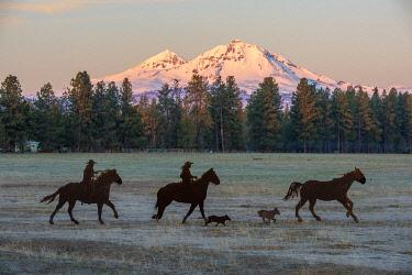 USA15644AW USA, Oregon, Deschutes County, Central Oregon,Cascade Mountains, Sisters,