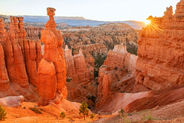USA15690AW USA, Southwest, Colorado Plateau, Utah, Bryce Canyon, National Park, UNESCO, World Heritagem sunrise