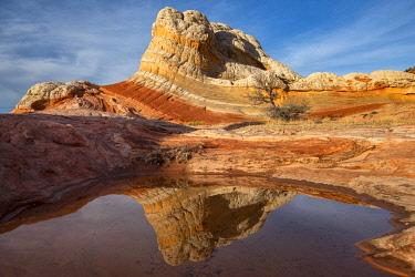 USA15723AWRF North America; USA; American; Southwest; Colorado Plateau, Arizona, Vermillion Cliffs, White Pocket, Coyote Buttes