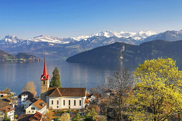 IBXSHU05769953 Holiday destination on Lake Lucerne with the parish church of St. Mary behind the snow-covered Alps, Weggis, Canton Lucerne, Switzerland, Europe