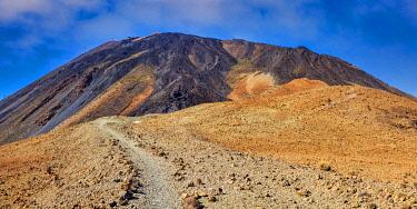 IBXWAA05777664 Tenerife National Park, World Heritage, Tenerife, Canary Islands, Spain, Europe