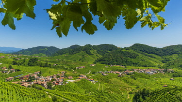 ITA15698AW europe, Italy, Venetia. The beautiful landscape of the Prosecco hills near to Valdobbiadene.