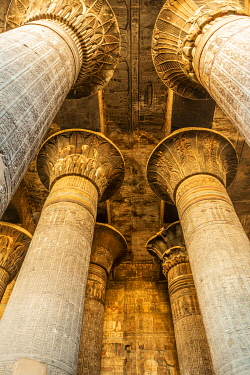 AF14MWT0172 Egypt. Temple of Khnum at Esna.