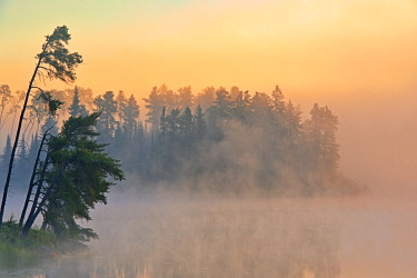 CN08BJY0514 Canada, Ontario, Kenora. Fog at sunrise on Isabel Lake.