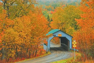 CN10BJY0262 Canada, Quebec, Sainte-Blandine. Autumn colors surround covered bridge.