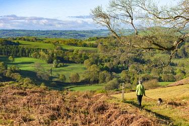 WAL7803 Wales, Dolanog, Woman walking on Allt Dolanog (MR)