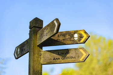 WAL7804 Wales, Dolanog, Waymark signposts for Glynd�r's Way and Ann Griffiths Walk