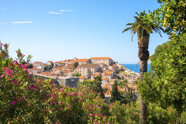 EU32TDR0165 Croatia, Dubrovnik. View from hill above walled city.