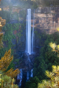 AUS4574AW Fitzroy Falls in the Southern Highlands, Morton National Park, New South Wales, Australia