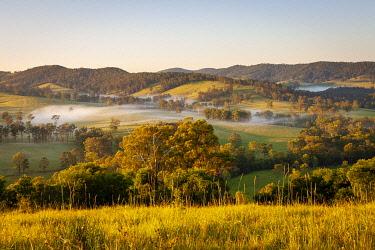 AUS4598AW Riverwood Downs. Barrington Tops National Park, Mid North Coast, New South Wales, Australia