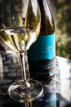 SPA9972AW Europe, Spain, Catalonia, Torrent, A glass of white wine at Mas Oller winery.