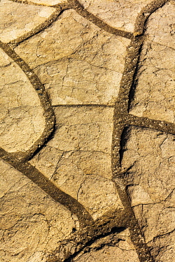 US05CHA0513 Mud cracks at Mesquite Sand Dunes in Death Valley National Park, California, USA.