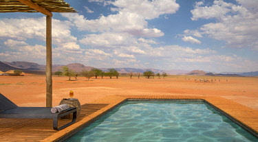 NAM6795 Namibia, NamibRand Nature Reserve, Kwessi Dunes, the swimming pool with oryx in the distance.