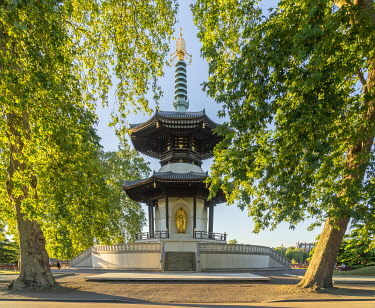 ENG18031AW The London Peace Pagoda, Battersea Park, London,England, UK