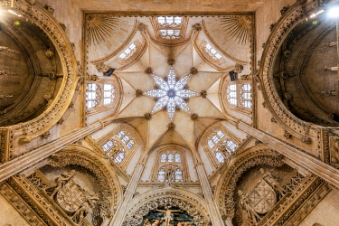 SPA10080AW Ceiling of Constable chapel, Cathedral of Saint Mary of Burgos, Burgos, Castile and Leon, Spain