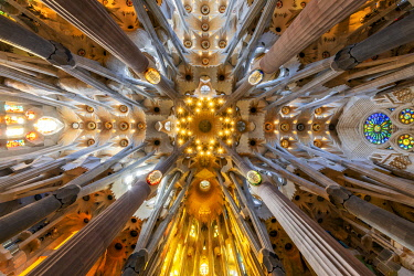 Low angle view of the ceiling in the nave, Sagrada Familia, Barcelona, Catalonia, Spain