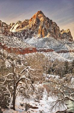 US45JFO0045 Zion in winter.
