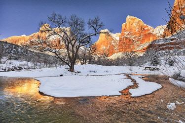 US45JFO0047 Zion in winter.