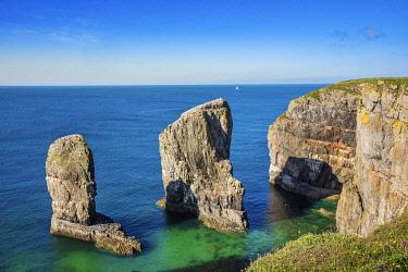 WAL7824AW Europe, United Kingdom, Wales, Pembrokeshire, Elegug Stack in Pembrokeshire Coast National Park