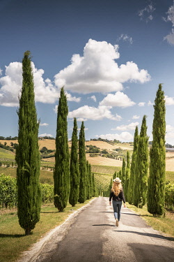 ITA16297AW Woman walking through cypress trees and vineyards in Marche region, Italy