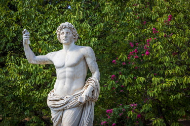 ITA16392AW europe, Italy, Latium. Rome, a statue in the Vatican Gardens