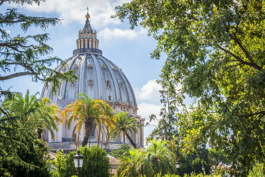 ITA16393AW europe, Italy, Latium. Rome, the Dome of Saint Peter's Basilica seen from the Vatican Gardens