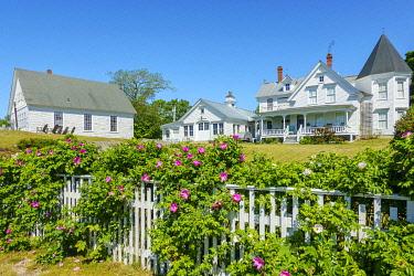USA15909AW Stonington, Deer Isle, Maine, United States