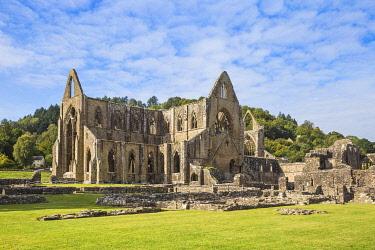 UK0858RF UK, Wales, Monmouthshire, Wye Valley, Tintern, Tintern Abbey