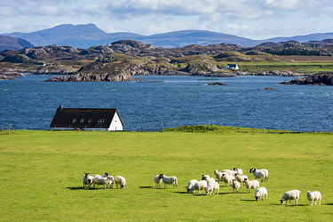 SCO35910 Scotland, Isle of Mull, Inner Hebrides, Iona, View across to the Isle of Mull