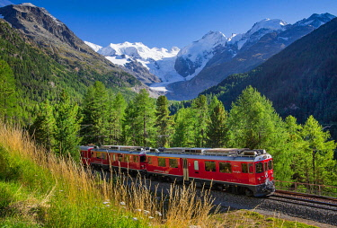 IBXGNG05893367 Train of the Bernina line over the Morteratsch valley with Bellavista, Piz Bernina and Morteratsch glacier, Pontresina, Bernina Alps, Upper Engadine, Engadine, Grisons, Switzerland, Europe