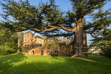 ENG18305 England, Shropshire, Red sandstone ruin of Acton Burnell Castle. Built between 1284 and 1293 by Bishop Burnell, Edward I's Lord Chancellor