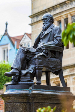 ENG18346 England, Shropshire, Shrewsbury, Central Library, Statue of Charles Darwin was built in 1897