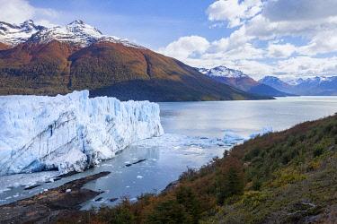 ARG3167AW Argentina, Perito Moreno Glacier, Los Glaciares National Park, Santa Cruz Province.