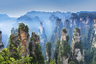 CH12550AW The Hallelujah or Avatar Mountains, Zhonghua, Zhangjiajie, Hunan, China