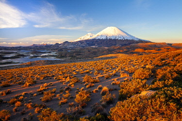 CHI11290AW Parinacota Volcano in Lauca National Park, Arica & Parinacota Region, Chile