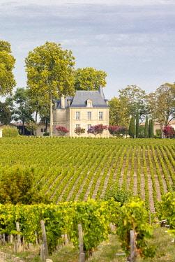 FRA12093AW France, Nouvelle-Aquitaine, Gironde, Medoc, Chateau Pichon Longueville Comtesse de Lalande
