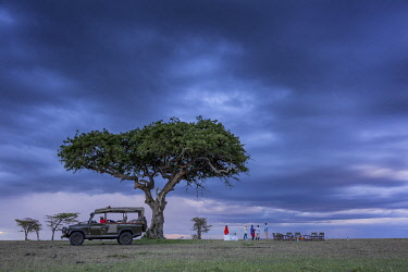 Richards Camp, Masai Mara, Kenya, sundowners beneath a huge tree and dramatic skies.