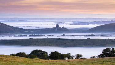 ENG18727AW Corfe Castle at dawn, Isle of Purbeck, Dorset, England, UK