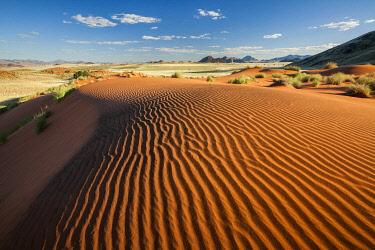 NAM6931AW Namib Desert, Wolverdans, Namibia, Africa