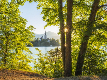 SLO1359AW Lake Bled in summer, Slovenia