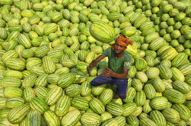 Workers unload watermelons from the boats using big baskets, Sadarghat, Dhaka, Bangladesh.